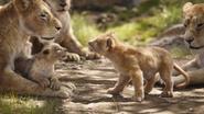 Lionking2019-animationscreencaps.com-2035