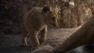 Lionking2019-animationscreencaps.com-5280