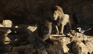 Scar Mufasa & Zazu 2019