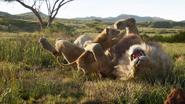 Lionking2019-animationscreencaps.com-1617