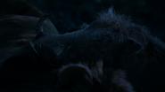 Lionking2019-animationscreencaps.com-8183