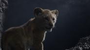 Lionking2019-animationscreencaps.com-2980
