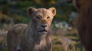 Lionking2019-animationscreencaps.com-9818