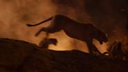 Lionking2019-animationscreencaps.com-11962
