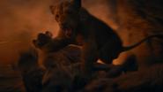 Lionking2019-animationscreencaps.com-11658