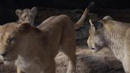 Lionking2019-animationscreencaps.com-7325