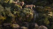 Lionking2019-animationscreencaps.com-9662