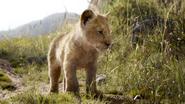 Lionking2019-animationscreencaps.com-1724