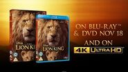 The Lion King - On DVD, Blu-Ray & 4K Ultra HD On November 18