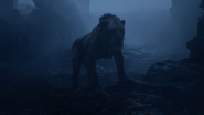 Lionking2019-animationscreencaps.com-3994