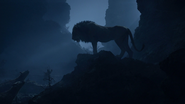 Lionking2019-animationscreencaps.com-4135