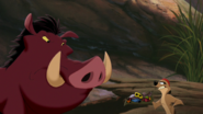Lion-king2-disneyscreencaps.com-1050