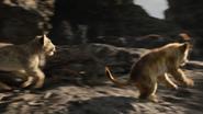 Lionking2019-animationscreencaps.com-3264