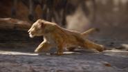 Lionking2019-animationscreencaps.com-4675