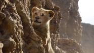 Lionking2019-animationscreencaps.com-4967