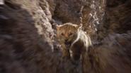 Lionking2019-animationscreencaps.com-5088