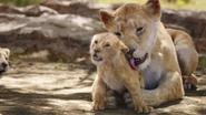 Lionking2019-animationscreencaps.com-2049
