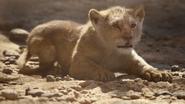 Lionking2019-animationscreencaps.com-4901