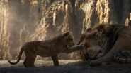 Lionking2019-animationscreencaps.com-5239