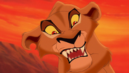 Lion-king2-disneyscreencaps.com-2546