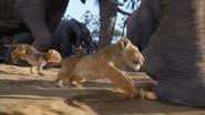 Lionking2019-animationscreencaps.com-2489