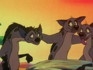 BTB hyenas14