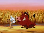 KBMF Timon & Pumbaa7