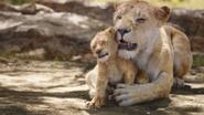 Lionking2019-animationscreencaps.com-2054