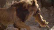 Lionking2019-animationscreencaps.com-4913