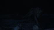 Lionking2019-animationscreencaps.com-7521