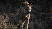 Lionking2019-animationscreencaps.com-3354