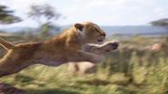 Lionking2019-animationscreencaps.com-2326
