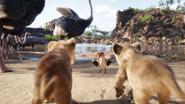 Lionking2019-animationscreencaps.com-2432