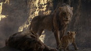 Lionking2019-animationscreencaps.com-5344