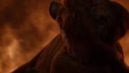 Lionking2019-animationscreencaps.com-11800