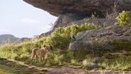 Lionking2019-animationscreencaps.com-1694