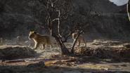 Lionking2019-animationscreencaps.com-2834