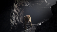Lionking2019-animationscreencaps.com-3006
