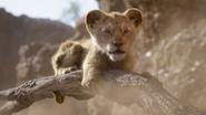 Lionking2019-animationscreencaps.com-4865