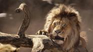Lionking2019-animationscreencaps.com-4877