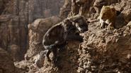 Lionking2019-animationscreencaps.com-5514