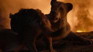 Lionking2019-animationscreencaps.com-11935