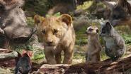 Lionking2019-animationscreencaps.com-6875