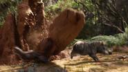 Lionking2019-animationscreencaps.com-8112