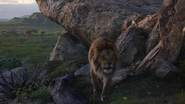 Lionking2019-animationscreencaps.com-1291