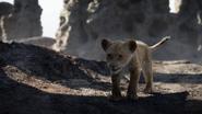 Lionking2019-animationscreencaps.com-2953