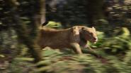 Lionking2019-animationscreencaps.com-9014