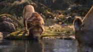 Lionking2019-animationscreencaps.com-9439