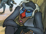 Jelani (baboon)
