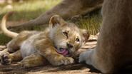 Lionking2019-animationscreencaps.com-2066